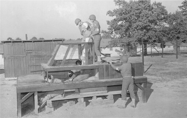 Students practice removing a wounded soldier from a tank
